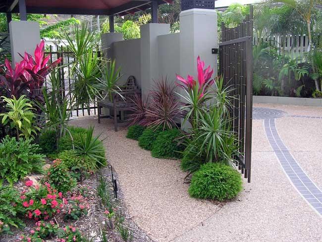 Townsville Garden | Suzan Quigg